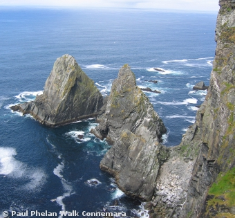 Sea Stacks on the dramatic coastline of Inishturk which is a Discovery Point on the Wild Atlantic Way
